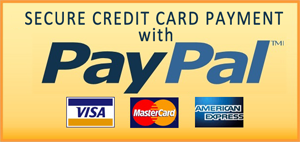 Secure Credit Card Payments with PayPal